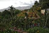 Botanical Garden,Funchal