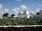 Lanzarote26.jpg
