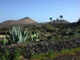 Lanzarote4.jpg