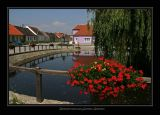 Oberorts-Teich bei  Tag