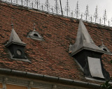 artistic roof
