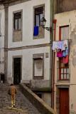 Rua de S. Sebastião