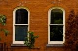 Windows of  272 Georgia Street - c.1880 (Whitney view)