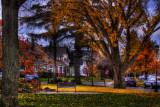 Larchmont-Radcliffe  Park