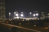 Bisons At Home At Night