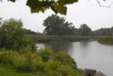 Rainy Day At Tifft