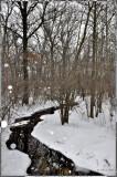 snow and creek