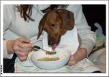 Soup Tasting