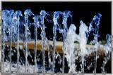 water strigs