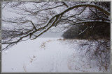 White path