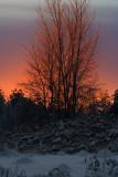 Coucher de soleil après le verglas_Sunset after freezing rain