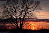 Coucher de soleil_Sunset