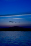 Just before sunrise over S�te