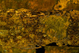 rusty layers 3D