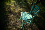 the turquoise chair