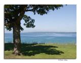 Bayfront Park shoreline