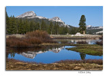 Tioga Pass Gallery - CLICK to ENTER