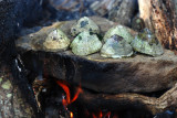 Cooking limpets
