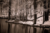 Alabama, snowy day (black & white)