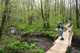 Laura in woods.JPG