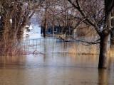 Spring Flood 3-09 05.jpg