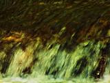 Water Study 01.jpg
