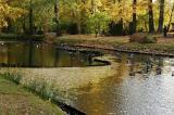 Japanese Garden Duc    a2005