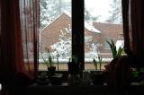 The snow full of  light