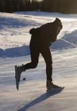 Nordic skates