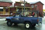 Velvet Eyes in her truck