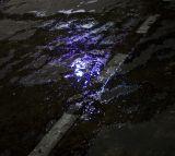 Street Colors - Violet