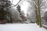 Snowy Faelledpark Copenhagen february 2009