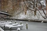 Winters day - Lyngby Denmark