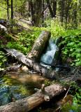 Nelder Grove Waterfall