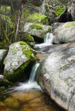 Flying O Ranch Creek