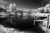 Sallys-Pond.jpg