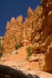 Hiking Through Red Canyon