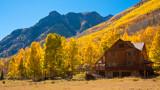 Aspen and Mountain Home Near Lake City
