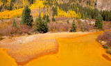 Mountain Stream Turned Yellow by Mine Tailings
