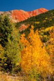 Aspen and Red Mountain