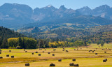 Freshly Mown Fields and Mountains Near Telluride