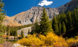 Aspen and Mountain Scene Near Alta Lakes Ghost Town