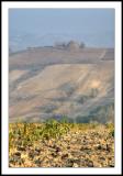Lombardy hillsides