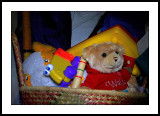 The toy basket