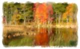 Autumn WetlandsFrancestown, NH