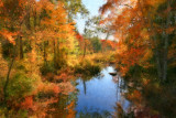 McQuade Brook, AutumnBedford, NH