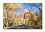 Zion Canyon Scenic DriveZion Nat'l Park, UT