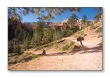 Navajo Loop TrailBryce Canyon Nat'l Park, UT