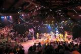 Festival of the Lion KingDisney's Animal Kingdom