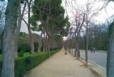 Parque del El Retiro